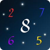 Your Numerologist 1.13
