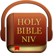 Audio Holy Bible (NIV) 3.0