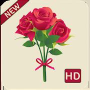 rose hd wallpapers 1080p 1.6