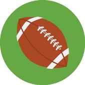 Guess NFL Team 2.1.4e