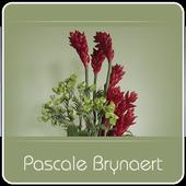 Brynaert Pascale 1.6.0.0