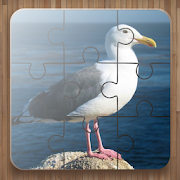 Bird Puzzle Games Free 2.23
