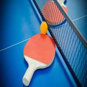 Ping Pong Pro 1.0