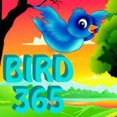 bird 365 1.0
