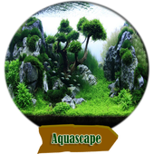 aquascape 2.0