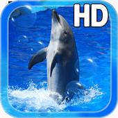 Animal Dolphin Live Wallpaper 1.1