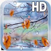 Autumn Raindrops Live HD 1.2
