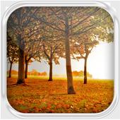 Autumn Landscape Water LWP 1.1
