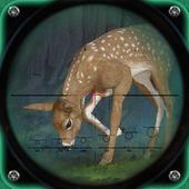 Hunting Expert Safari Animal Hunter