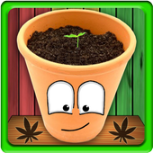 MyWeed - Weed Growing Game 3.7