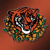 Princeton Tigerlilies Hockey 2.4