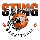 Arizona Sting Basketball 1.1
