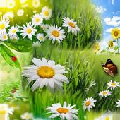 Spring Wallpaper HD 1.01