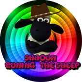Shaoun runing the sheep 1.1