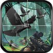 Hunting Jungle Birds 2016 1.0