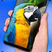 Parrot Live Wallpaper - HD 1.0