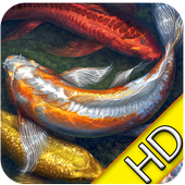 3D Koi Live Wallpaper 1.1