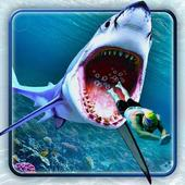 Angry Shark AttackSolid Metal GamesAction