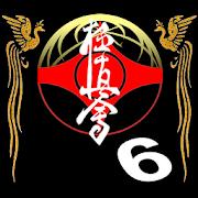 Kyikushin - Fighting & Kumite 2.0