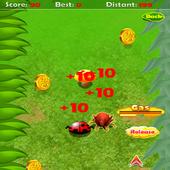Beetle Race 1.0