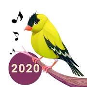 Bird Calls, Sounds & Ringtones 6.0.1