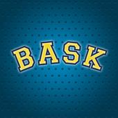 BASK 1.0.3