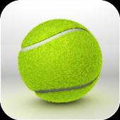 Tennis Balls Live Wallpaper HD 1.1