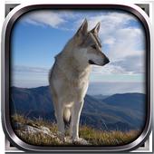 Wild Wolf Simulator 3D 2015 1.8
