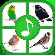 Birds Sounds And Ringtones 1.1