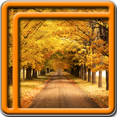 Autumn Live Wallpapers 1.7