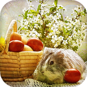 Easter Live Wallpaper (Backgrounds HD) 10.0