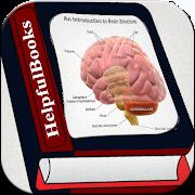 Brain 5.0.0