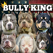 BULLY KING Magazine 5.2.0