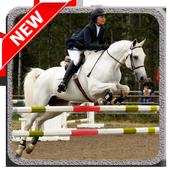 Horse Jump Show 1.2