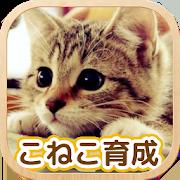 ねこ育成ゲーム - 完全無料!子猫をのんびり育てるアプリ!かわいいねこゲーム! 2.0.5