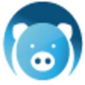 Cash.Piggy 6.0
