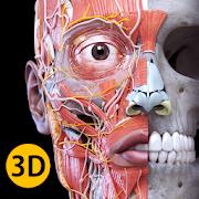 Anatomy 3D Atlas 3.1.1