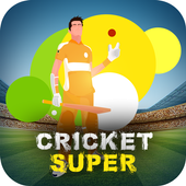 Cricket Super Tournament - Cricket Game 2018