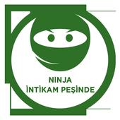 Ninjanın İntikamı 2.2