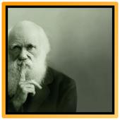 Charles Darwin 1.1
