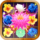Blossom Crush 1.1