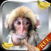 Monkey Live Wallpaper 3.0