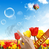 Tulips and Bubbles LWP 3.0