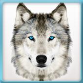 Wolf Life Simulator 2017 1.1