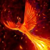 Fire-bird live wallpaper 1.1