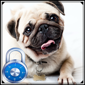 Pug dog lock screen 1.0