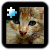 Jigsaw Puzzle: Kitten 2.0