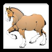 Horse Weight Estimator 1.0