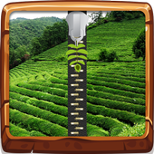 Tea Field Zipper Lock Screen 1.5