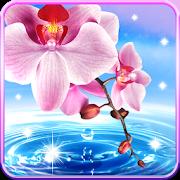 Orchid lock screen. 1.0.0.25